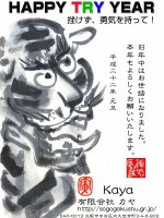 2010Kaya